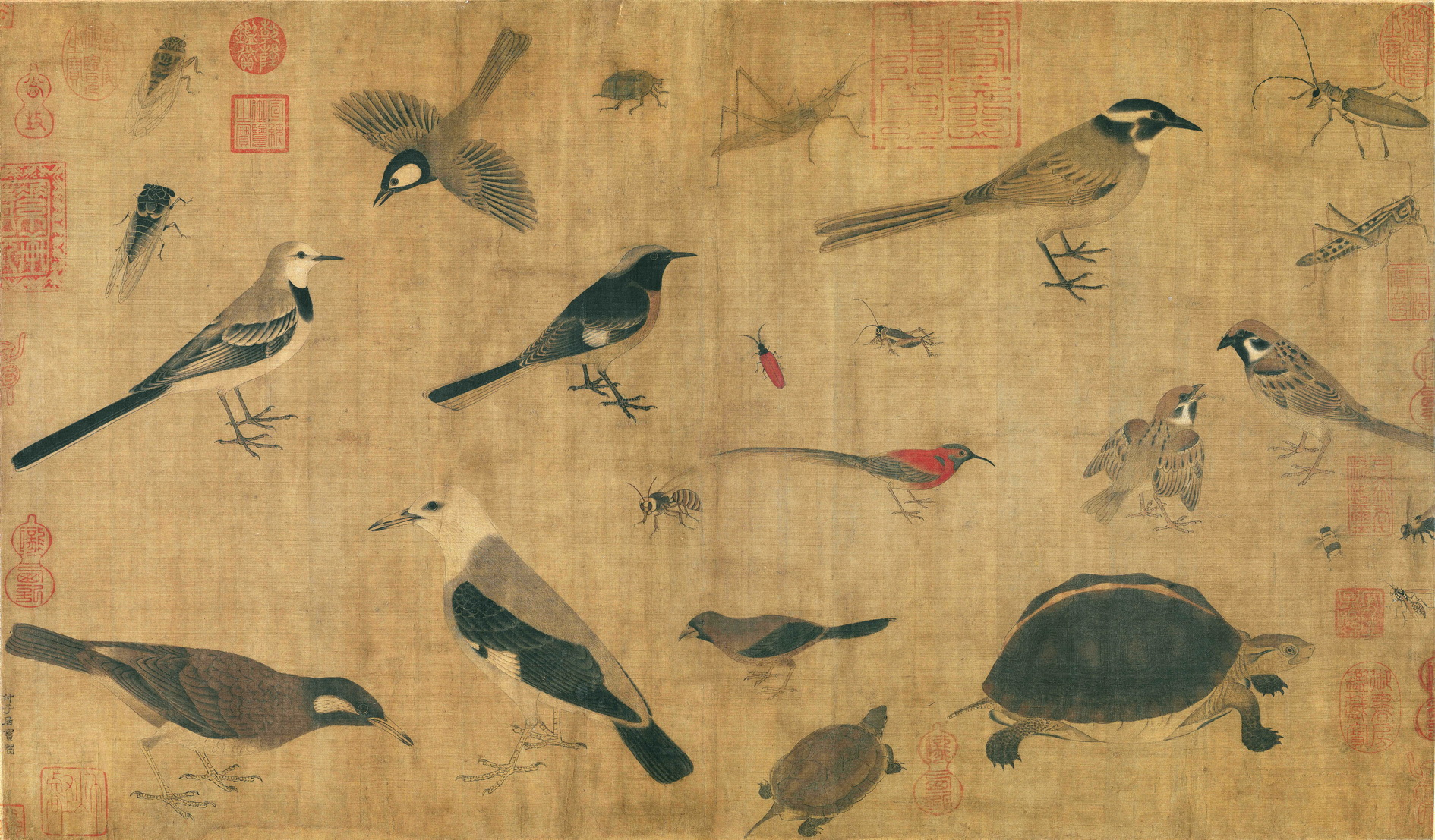 Huang-Quan-903-965-CE-Sketches-of-Birds-and-Insects